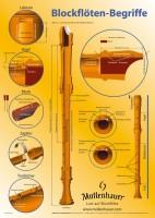 Mollenhauer Poster »Blockflöten-Begriffe«