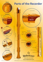 "Poster ""Recorder-Terms"", 61 x 43 cm"
